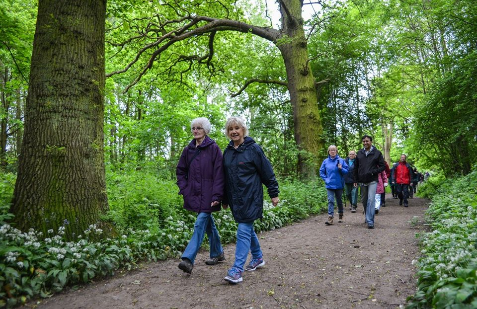 The new Charnwood Guided Walks Brochure is now out!
